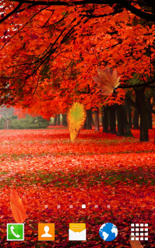 Осенний лес скриншот 2