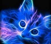 Neon Animal Wallpaper logo