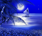 Ночной Пляж logo