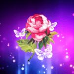 Абстрактные цветы Live Wallpaper