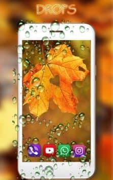 Осень Дождь скриншот 3