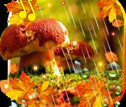 Осень Дождь logo