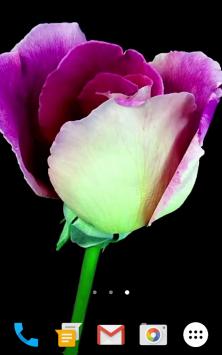 Цветы Видео скриншот 3