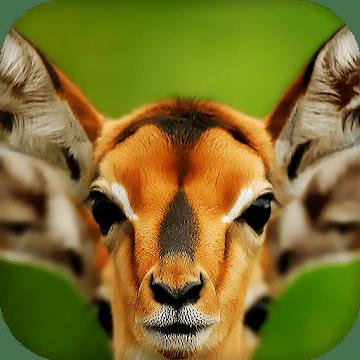 Дикие животные живые обои и темы logo