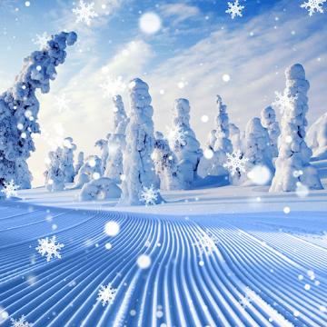 Зима logo