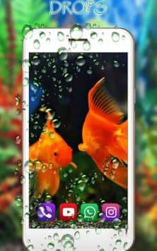 Аквариум Золотой Рыбки скриншот 1