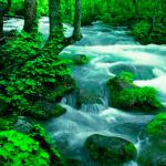 Hilly River живые обои