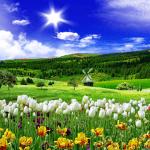 Весенняя природа