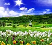 Весенняя природа logo