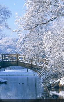 Зимние сюжеты скриншот 2