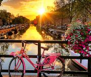 Город Амстердам обои (фоны и темы) logo