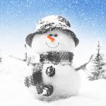 Зима, зима Live Wallpaper