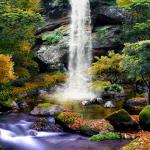 3D Осенний Водопад