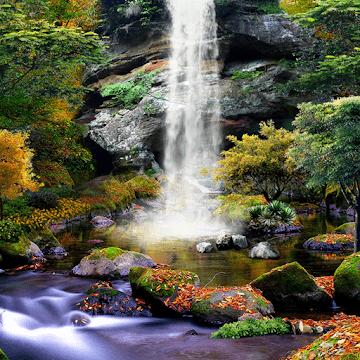 3D Осенний Водопад logo
