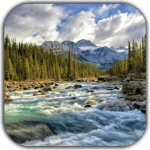 Река 4K-видео живые обои