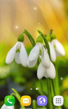 Цветы, весна скриншот 1