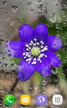 Цветы, весна скриншот 4