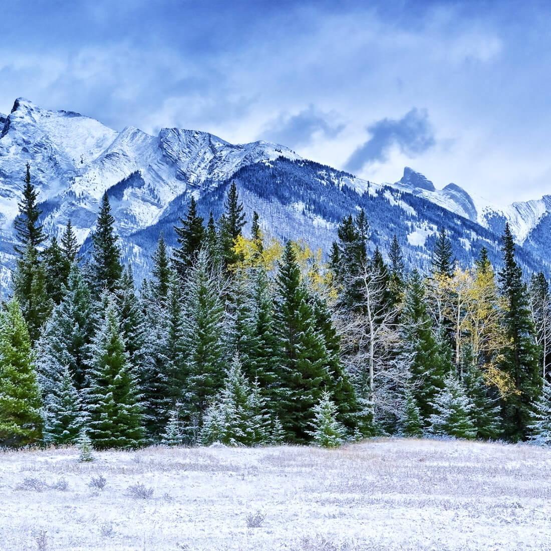 Гора скриншот 3