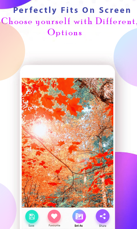 Autumn Wallpaper скриншот 4