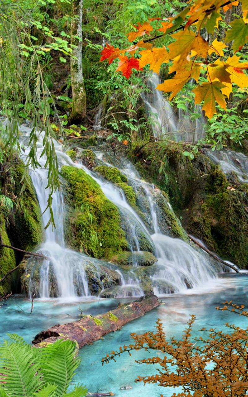 Les vodopad скриншот 3