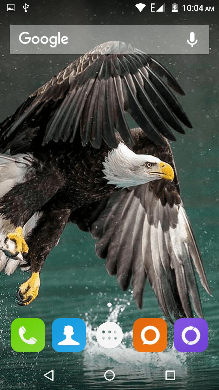 Eagle скриншот 4