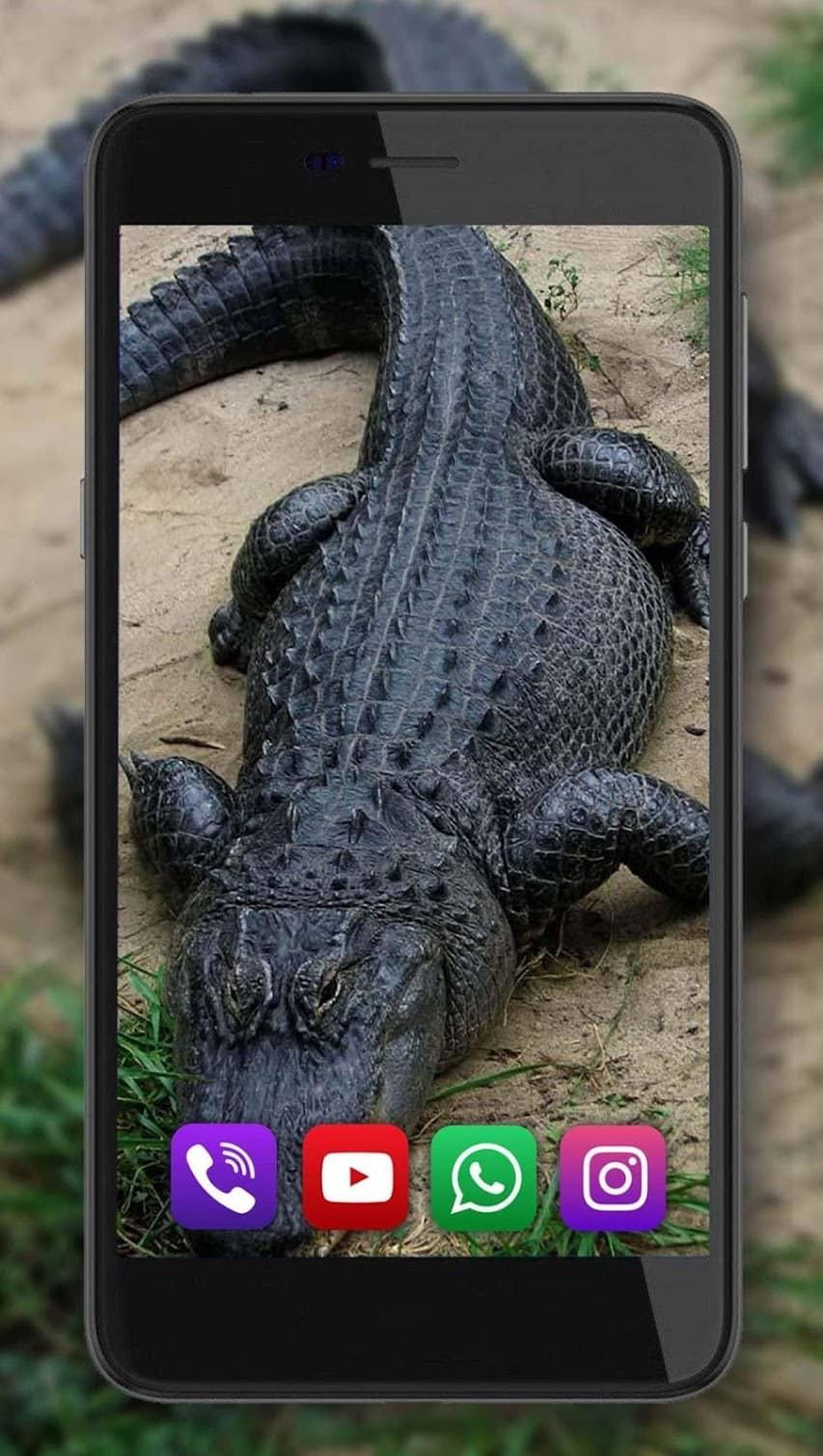Krokodily скриншот 2